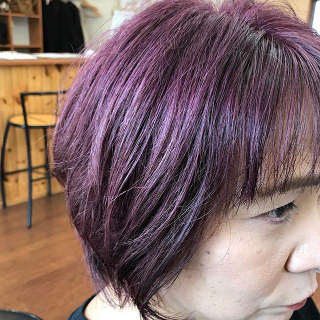 ショートカットがお似合いのお客様久しぶりの髪色チェンジグレイジュ、アッシュ、フォギーベージュの寒色系からやはりお似合いのこの色プロッサムへとてもいい感じになりました#ヘアリゾートソア #カラー#イルミナカラー #ブロッサム #ショートカット #冬色カラー #お似合い
