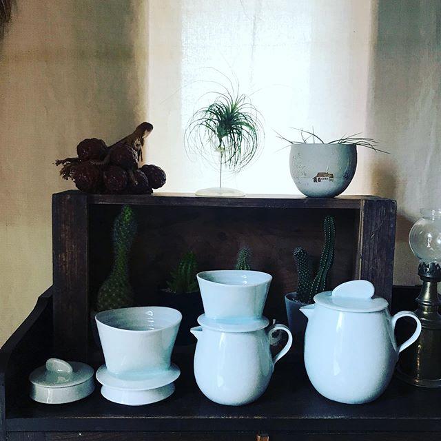 今日のお休みは美里にある草春窯 【工房 爽】さんに体験陶芸でお邪魔してきました。工房は大好きな白磁の器やドライフラワー。玄関には多肉ちゃんが所狭しと置かれていて楽しすぎてなかなか工房まで足が進まない程田崎さんと奥様の楽しい会話とカフェ並のコーヒーと美味しいお茶菓子体験陶芸も大満足で終わり、相変わらずの田崎さんの腕前の凄さにうっとりです❣️ 出来上がりがとてもとても楽しみ〜️ 帰り道は喜多方の月とおひさまでランチ心も身体も満たされた〜っな1日でした#爽 #草春窯工房爽 #会津美里町 #陶芸 #白磁 #陶芸体験 #喜多方#喜多方つきとおひさま #ランチプレート #身体に優しい