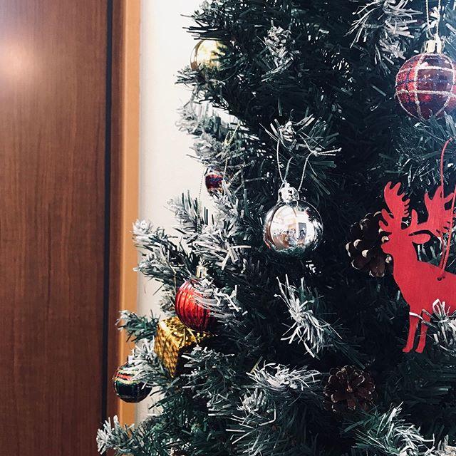早いもので12月毎年の事ですがあっという間の1年です明日から雪模様ですね️ 今年はクリスマスツリー🌲新調しました本物松ぼっくりとうっすら雪️の本物風(笑)昨日飾り付けが終わり、今日お店に出しました今夜のテレビ番組でクリスマスは何の日と言うクイズに、 『チキン』と答えてた子がいた そんな世相か?令和の時代#クリスマス#クリスマスツリー #令和 #トリニク #松ぼっくり #雪